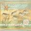 กระดาษสาพิมพ์ลาย สำหรับทำงาน เดคูพาจ Decoupage แนวภาำพ ภาพวาดสีหวาน นก 5 ตัว เดินเล่นกันอยู่ทีชายหาด พื้นสีเขียวซอฟท์ๆ ภาพในกรอบแบบหลุยส์ (ปลาดาวดีไซน์) thumbnail 1